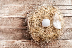 Easter nest with White Egg on dark grunge  wooden background wit Stock Photo