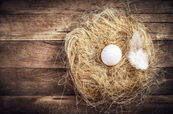 Easter nest with White Egg and feather on wooden background with Stock Images