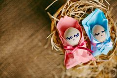 Easter newborns Stock Photography