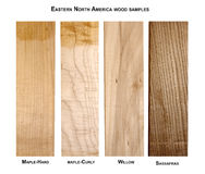 Easter North America wood samples Stock Image