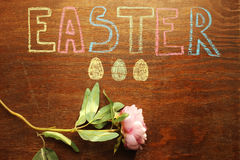 Easter note, eggs and blooming flower Stock Images
