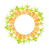 Easter orange carrots pattern on a white Royalty Free Stock Photos