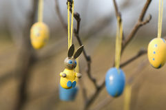Easter ornaments. On tree close up Stock Photos