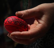 Easter painted egg Stock Image