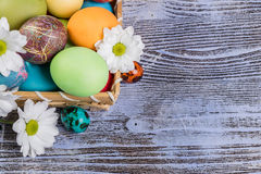 Easter Painted Eggs in Basket Stock Image