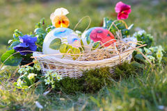 Easter painted eggs among flowers Royalty Free Stock Image
