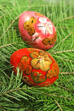 Easter painting eggs Stock Image