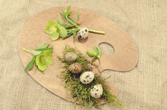Easter palette decoration with quail eggs and hellebore stock photography