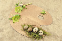Easter palette decoration with quail eggs and hellebore with empty field Stock Image