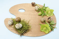Easter palette decoration with quail eggs and hellebore over the blue background Royalty Free Stock Photos