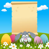 Easter Parchment Scroll in a Meadow. A Easter invitation card with a lurking bunny rabbit and an old parchment scroll in a meadow with green grass, flowers and Stock Photography