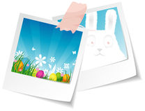Easter photo Stock Images