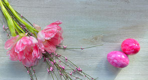 Easter Pink tulips on wood background Royalty Free Stock Photos