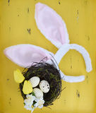 Easter pink and white bunny ears on yellow wood Stock Photography