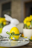Easter plate with decor egg Stock Photography