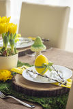 Easter plate with decor egg and catkin Royalty Free Stock Photography