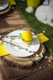 Easter plate with decor egg and catkin Royalty Free Stock Photos