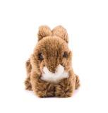 Easter plush rabbit. Royalty Free Stock Photos