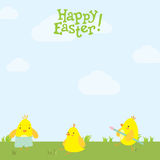 Easter postcard cute chickens on the grass. Royalty Free Stock Photos