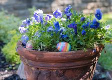 Easter in a potted plant stock photography