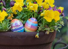 Easter in a potted plant royalty free stock photo
