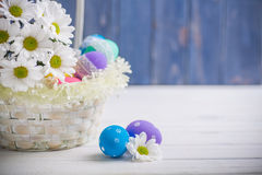 Easter present basket with white flowers and colored eggs on wooden background spring inspiration Stock Images