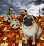 Easter pug Royalty Free Stock Photography