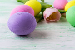 Easter purple egg and pink tulip Stock Images