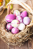 Easter purple eggs in basket Stock Photos