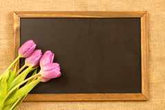 Easter. Purple tulips with a chalkboard over canvas background Stock Photos