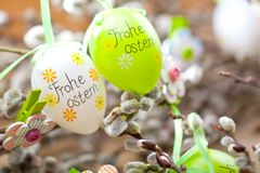Easter Pussy-willow and Easter egg on wooden background. Happy. Easter card. with Happy Easter text in german royalty free stock photos