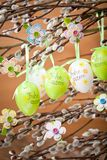 Easter Pussy-willow and Easter egg on wooden background. Happy. Easter card. with Happy Easter text in german royalty free stock photo