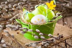 Easter Pussy-willow and Easter egg on wooden background. Happy stock photography