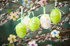 Easter Pussy-willow and Easter egg on wooden background. Happy. Easter card. with Happy Easter text in german royalty free stock photography
