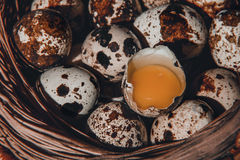 Easter quail eggs. In a basket Stock Photos