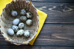 Easter quail eggs in the basket on rustic wooden. Easter eggs in the basket on rustic wooden background Stock Photos