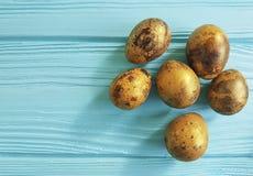 Easter quail eggs on blue wooden. Celebrationn Stock Images