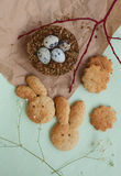 Easter quail eggs and cookies Royalty Free Stock Image