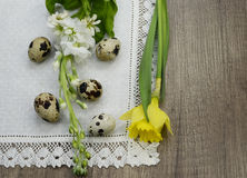 Easter quail eggs on a linen napkin, beautiful narcissus. Easter quail eggs on a linen napkin with  beautiful   white blossoms and narcissus Royalty Free Stock Images
