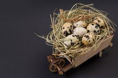 Easter quail eggs in the nest and blank handmade paper sheet. Blank gretting card for Easter holidays. On black stock image