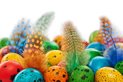 Easter quail Eggs painted beautiful multicolored background Stock Photo