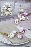 Easter quail eggs with pink cyklamen Royalty Free Stock Images