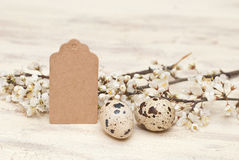 Easter. Quail eggs, tag and flowers Royalty Free Stock Image