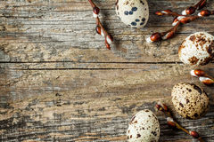 Easter - quail eggs and willow branches with catkins on wood Royalty Free Stock Photo