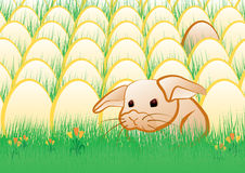 Easter rabbit. Young rabbit in front of many eggs on the meadow. Some simple frowers near it vector illustration