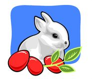 Easter rabbit. The white rabbit with easter eggs and a green branch on a blue background Royalty Free Stock Photos