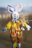Easter rabbit. In checkered pants Royalty Free Stock Photography