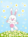 Easter rabbit. On the floral meadow Royalty Free Stock Photos
