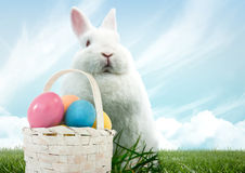 Easter rabbit with basket of eggs in front of blue sky Royalty Free Stock Images