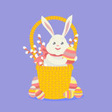 Easter rabbit in basket Stock Photos